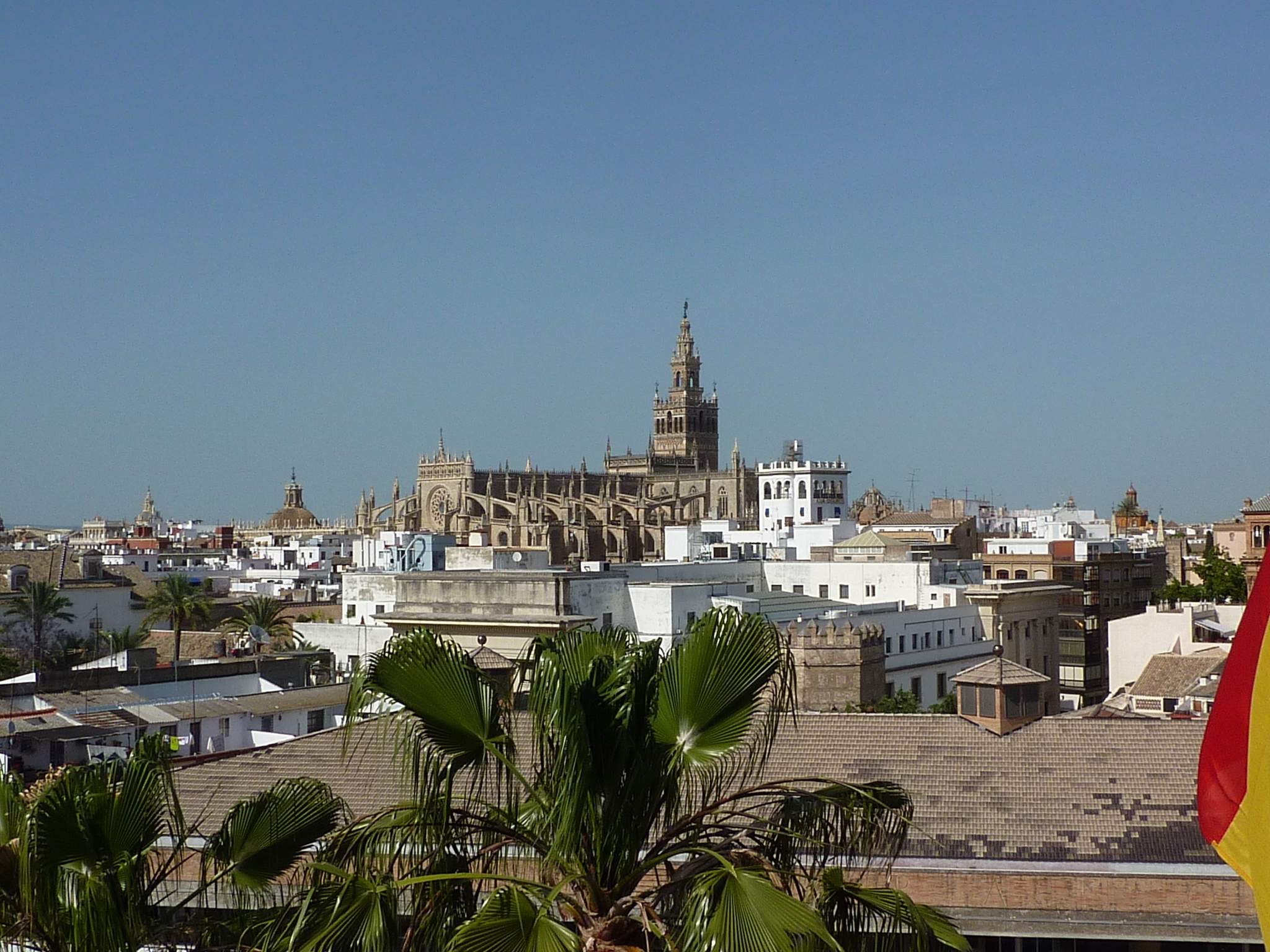 "View of  ""La Giralda"" while language learning in Seville - Spain"