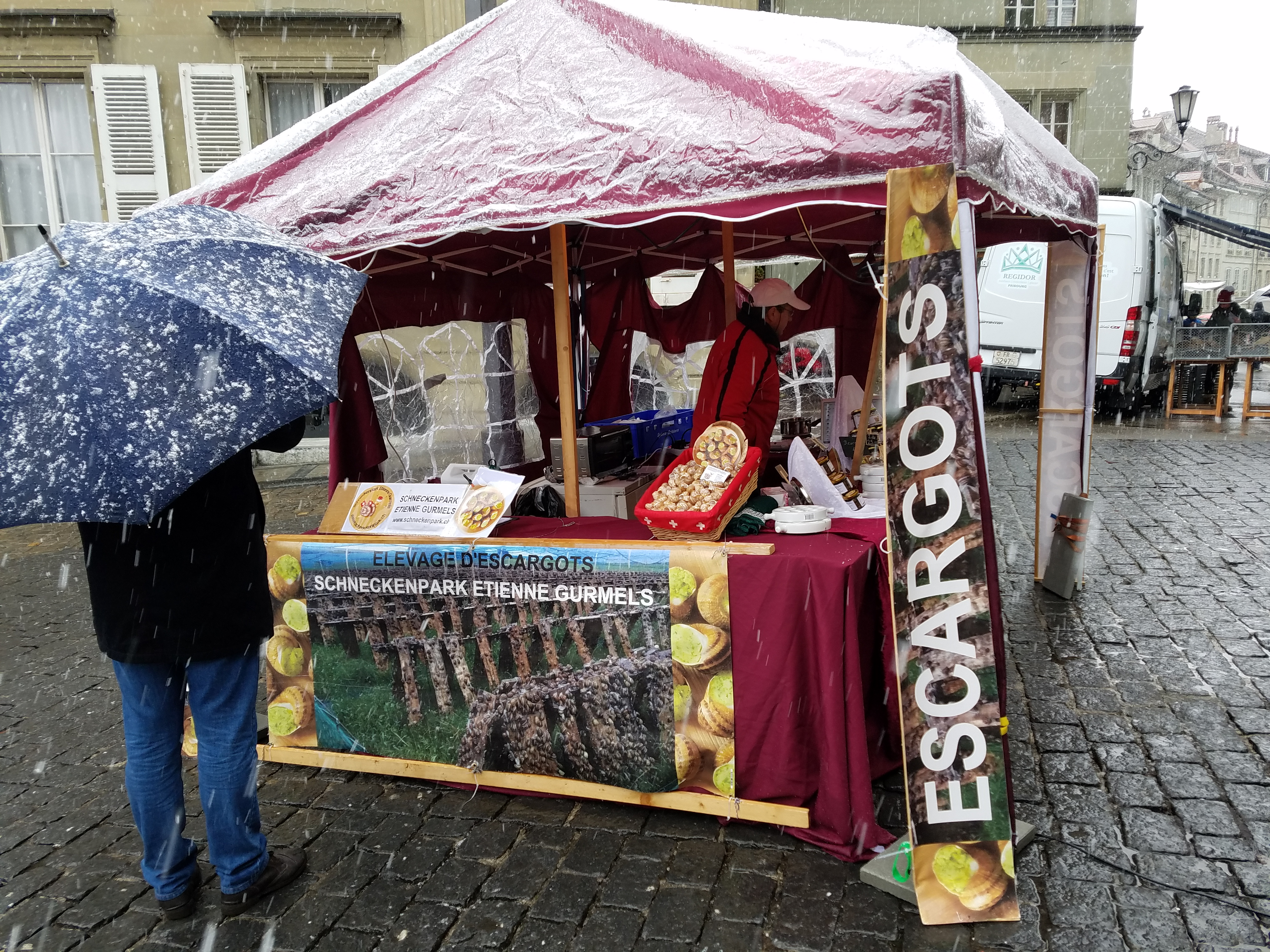 Fribourg - Snails for sale - Gamesforlanguage.com