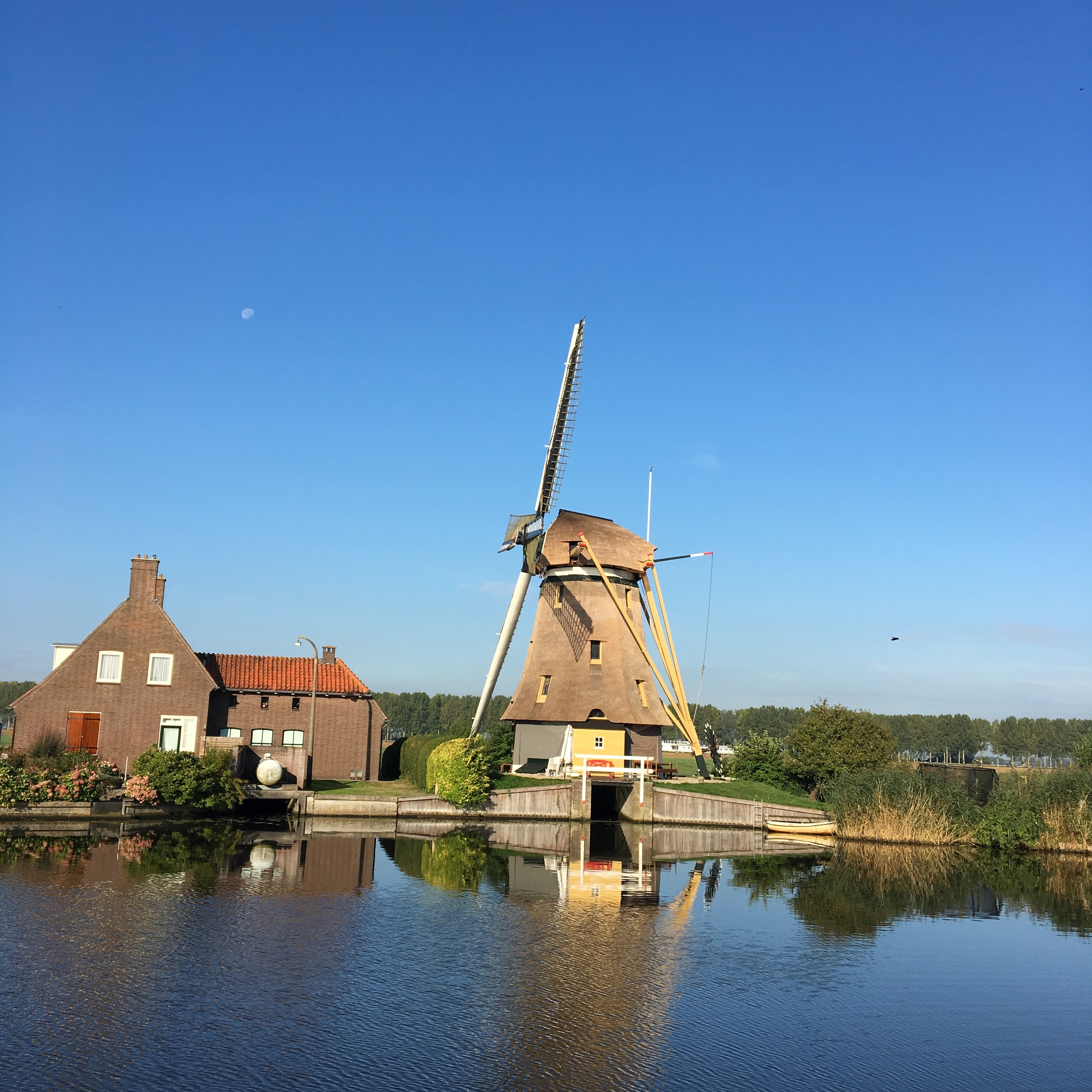Dutch windmill at rest
