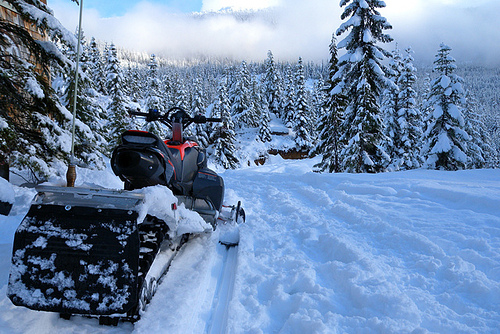 Snow mobiles in Canadian forest