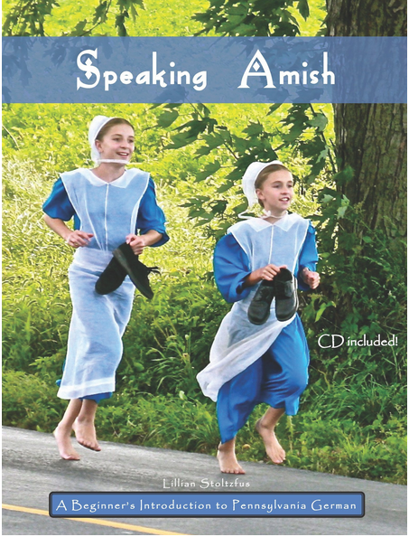Speaking Amish Cover photo