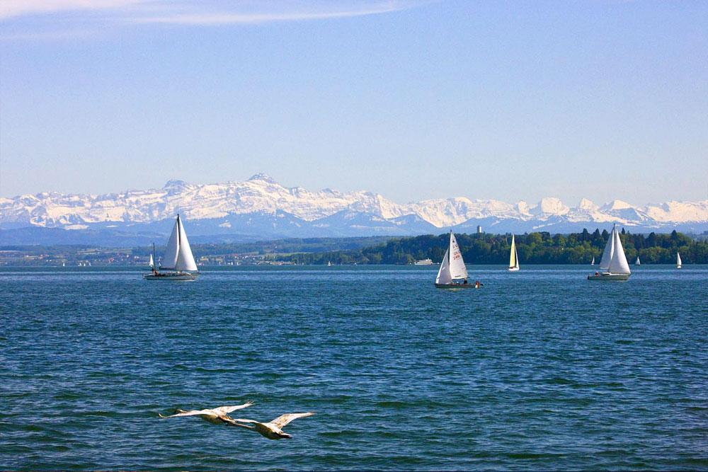 Sailing with alps in the background